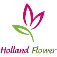 logohollandflower klein
